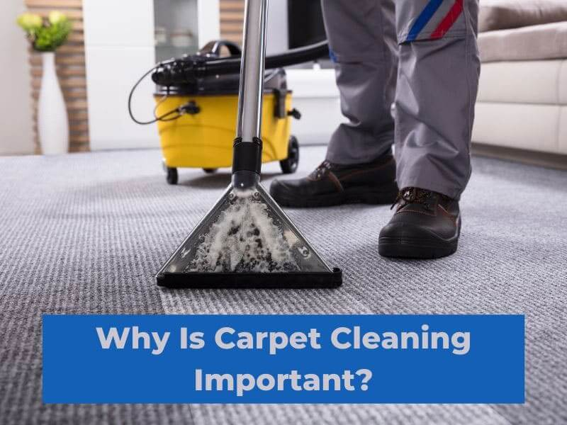 Why Is Carpet Cleaning Important