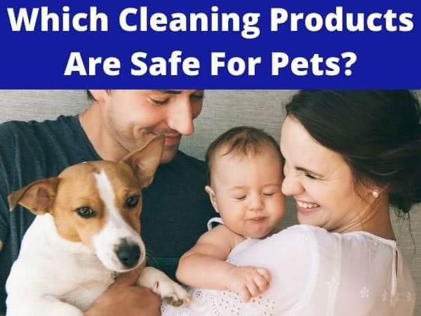 Which cleaning products are safe for pets