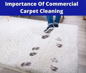 importance of commercial carpet cleaning