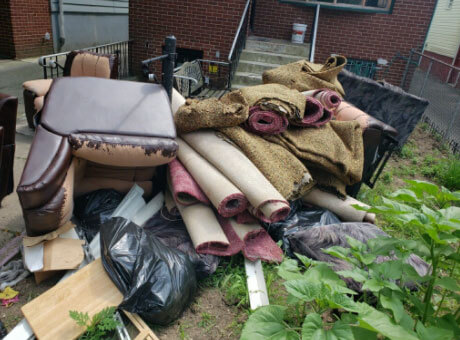 junk removal rugs