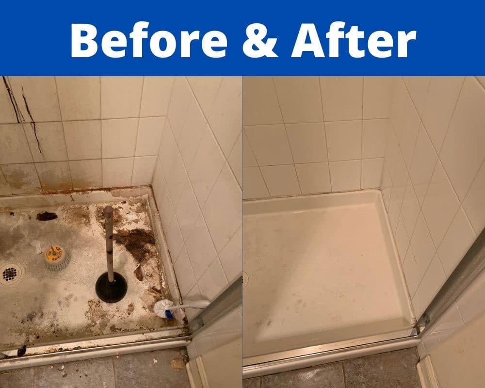 before and after from hoarder house